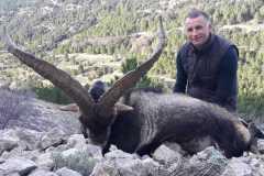 beceite-ibex15